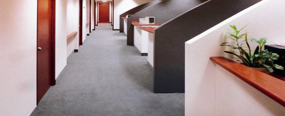 Carpet And Rug Cleaning Discount Carpet Cleaning Orlando